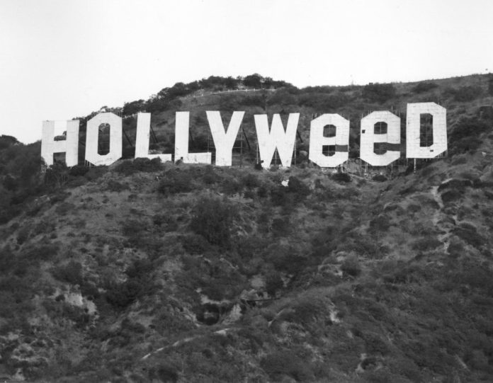 hollywood weed